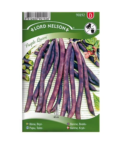 Frö, fröer Böna, Bryt- 'Purple Queen'