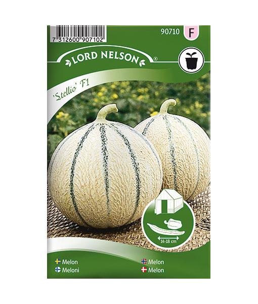 90710-melon