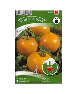 Tomat, Biff-, Orange Queen