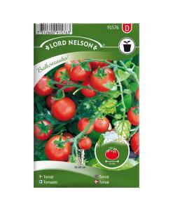 Frö fröer Tomat, Busk-, Balkonzauber