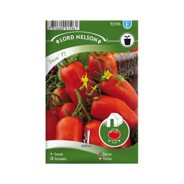 Frö fröer Tomat, Busk-, Incas F1, avlång