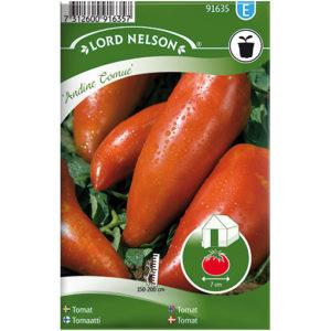 Frö fröer Tomat, Andine Cornue