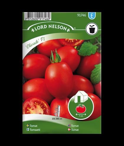 Frö fröer Tomat, Växthus-, Olivade F1, avlång