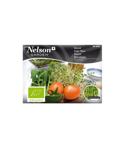 Primo Vitamino, Broccoli, Organic 5656