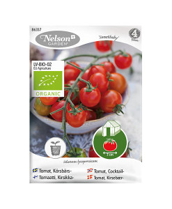 Frö fröer Tomat, Körsbärs- 'Sweetbaby'