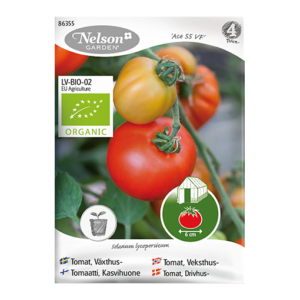 Frö fröer Tomat, Växthus- 'Ace 55 VF'