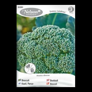 Frö fröer Broccoli 'Groene Calabrese'